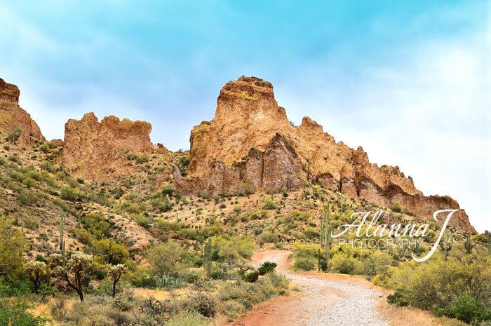 Box Canyon Arizona Landscape photo