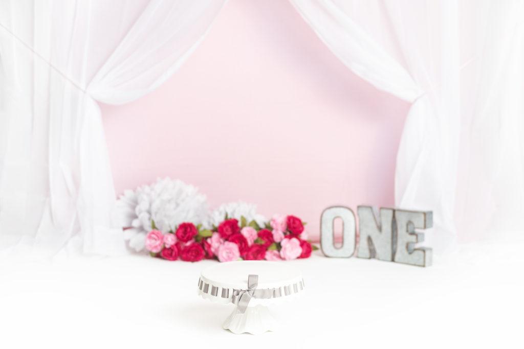 Pink Princess Milestone Session